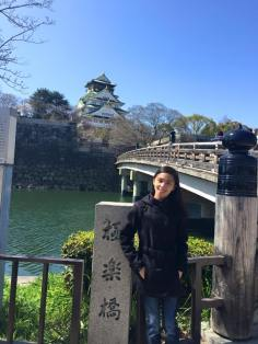Osaka Castle by far..